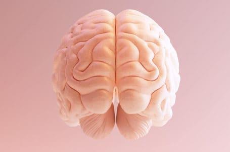 É possível falar em direito à neuroproteção?