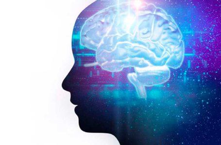 O que ler, ouvir e assistir para aprender mais sobre neurodireitos
